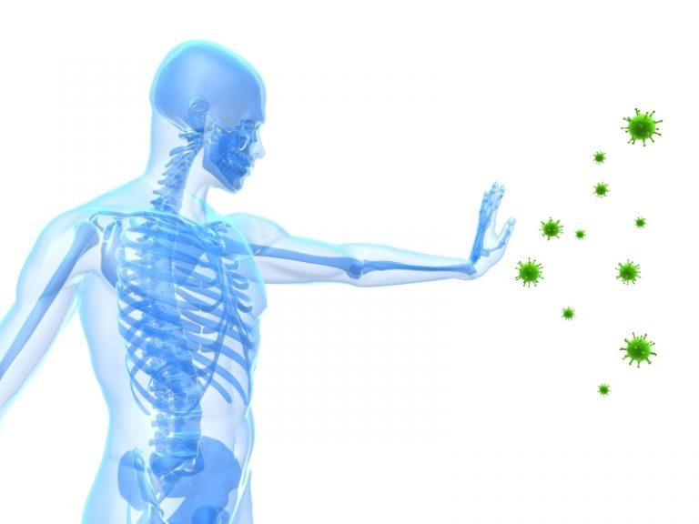 Immune System Boost With Chiropractic Care